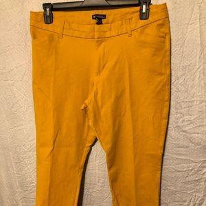 PANTS BY GAP SIZE 14